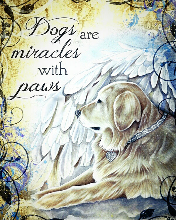 Dogs are Mirales with Paws